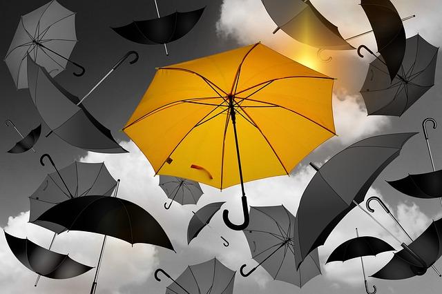 dešťník