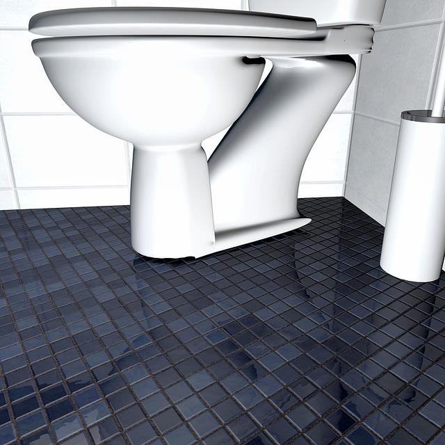 moderní toaleta