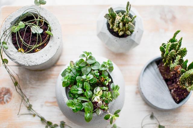 betonové květníky